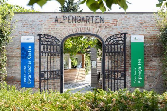 Alpine Garden Belvedere Museum Vienna